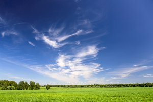 landscape with perfect sky