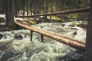 a bridge of logs across a mountain river