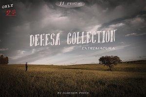 Dehesa Collection. Extremadura