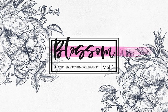 """Blossom.Vol.1"" - graphic botanica."