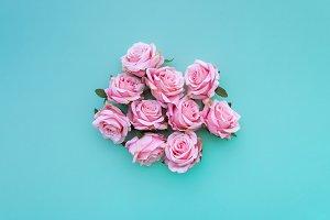 Satin roses on turquoise background.