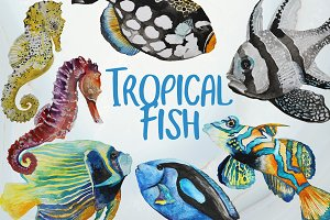 Tropical Fish - Watercolor clip art