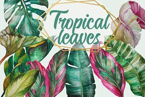 Tropical Greenery, Tropical Leaves