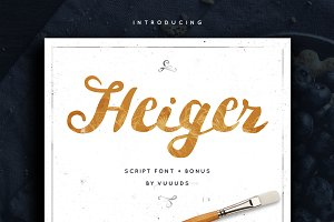 Heiger Script + Bonus Vector