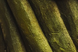 relief stone. green color. background and texture. wallpaper.