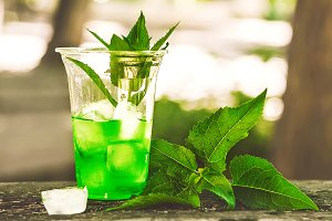 summer drink to quench your thirst. Refreshing mint and ice cubes. nature