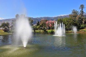 Magnificent park
