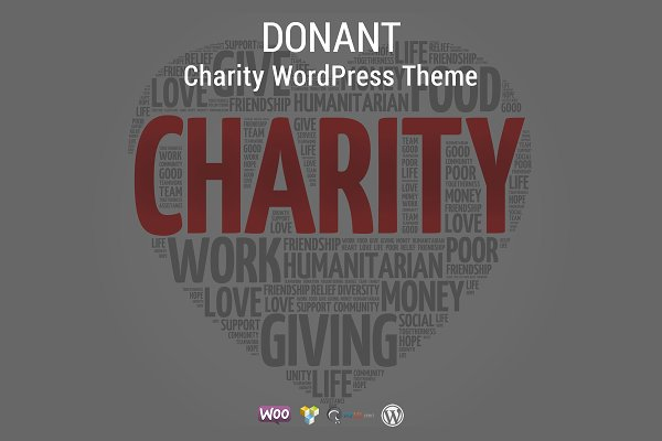 WordPress Non-Profit Themes: Cbsnet - Donant - Charity WordPress Theme