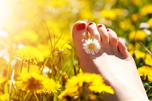 Woman's foot with a spring flower