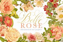 Belle Rose Antique Graphics Bundle by  in Illustrations