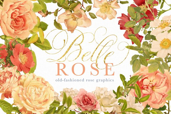 Illustrations and Illustration Products: Eclectic Anthology - Belle Rose Antique Graphics Bundle