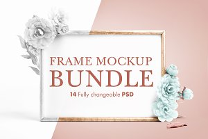 14 Fully Changeable Frame Mockups