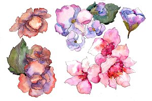 Pink flower Gardenia PNG watercolor