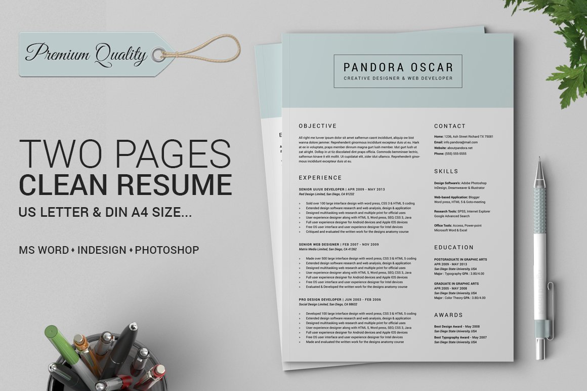 2 Pages Clean Resume CV - Pandora ~ Resume Templates ~ Creative Market