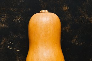 Raw whole pumpkin on a dark background. Pumpkin is oval in shape. Top view, copy space. The concept of autumn.