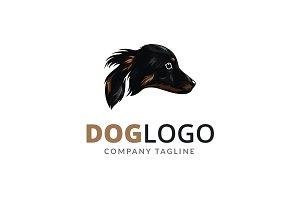 Dog Brand Logo