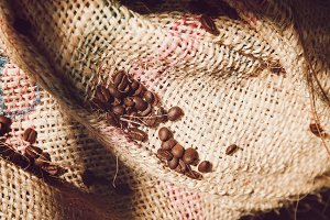 Coffee beans on the rustic bag
