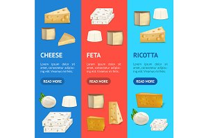 Cheese Different Types Set. Vector
