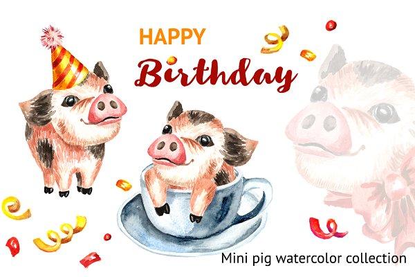Mini Pig. Happy Birthday collection