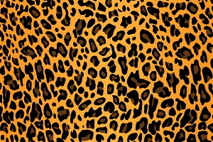 vector of leopard skin texture