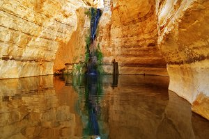 The canyon Ein-Avdat
