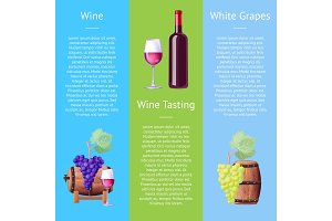 Wine Taste White Grapes Vector Illustration Poster