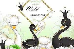 Wild swans clipart