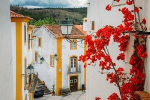 Traditional Portuguese Facade