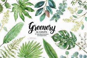 Greenery watercolor clipart