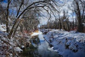 Winter morning along icy stream