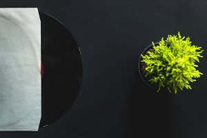 overhead vinyl record in cover box on dark black surface with flower mockup
