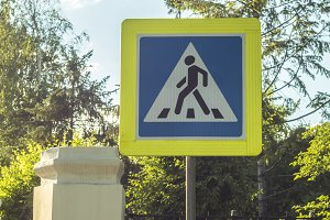 pedestrian sign in the street between the green trees