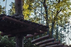 rope bridge between the trees in park outdoor summer sport