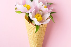 Spring or summer mood concept. Flat-lay of waffle sweet cone with peonies over pastel light pink background, top view.