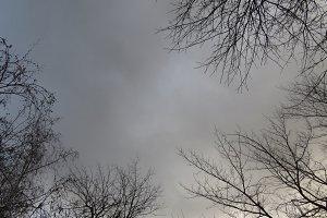 Grey wintery sky