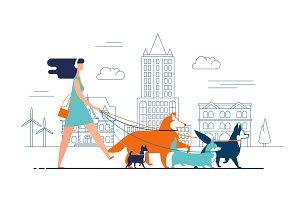 Walkin dogs along the city street