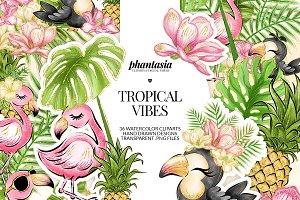 Flamingo Tropical Cliparts