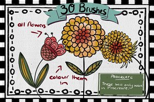 30 x Procreate Flower Brushes