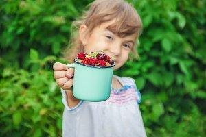 Different homemade summer berries
