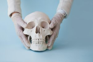 Human skull on clear blue background