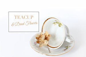 Stock Photo-Teacup and dried flowers