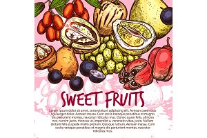 Exotic fruit or sweet tropical berry sketch poster