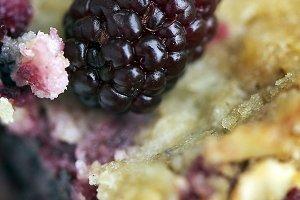 Blackberry for breakfast bars