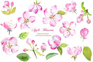 Watercolor Apple Blossoms Pink