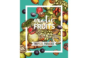 Exotic tropical fruit sketch banner of food design