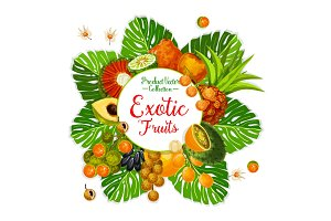 Exotic fruit and berry poster with tropical palm