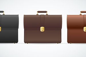 Vector briefcase, cuitcase set