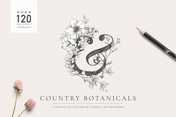 Illustrations and Illustration Products: Lisa Glanz - Country Botanicals & Monograms