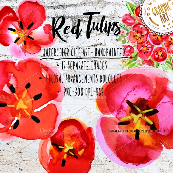 Red Tulips Watercolor Clipart