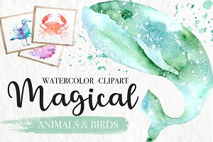 30%OFF. Watercolor Magical Animals